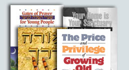 Projects for Jewish organizations